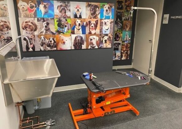 Sink and table for dog grooming with collage of dog photos on the wall in the St. Francis House Dog Care Academy training classroom.